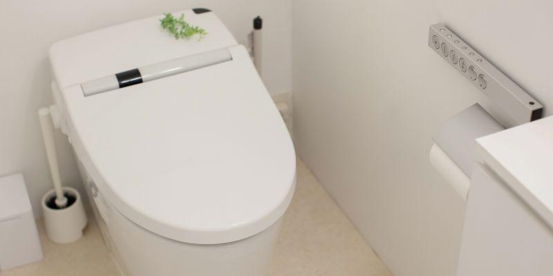 素手でトイレ掃除をする動画に批判殺到